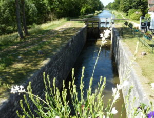 Canal d'Orléans à Chailly en Gâtinais