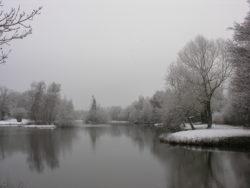 L'étang de Châtenoy durant l'hiver