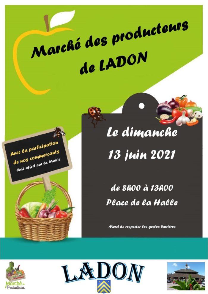 13-06 Ladon