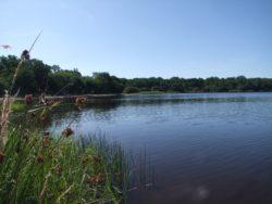 Sentier de l'étang