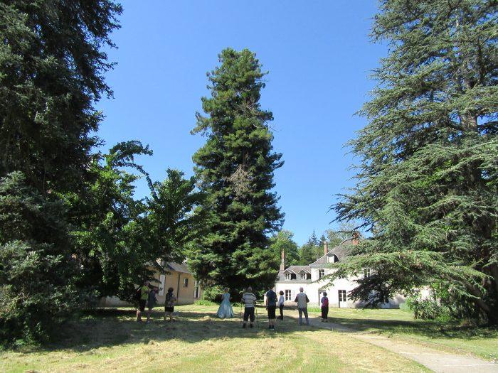 Arboretum_Nogent sur Vernisson_hors les murs_2020_20