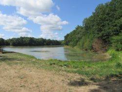 L'étang de Changy