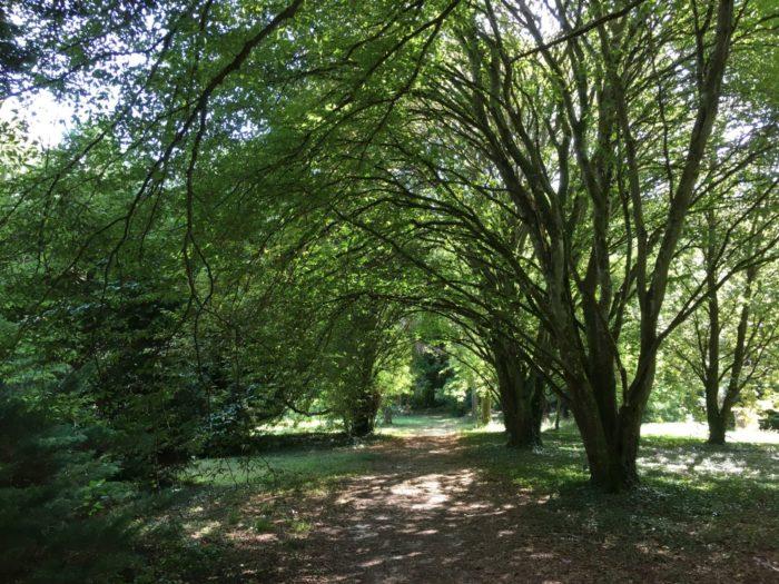 arboretum-des-barres