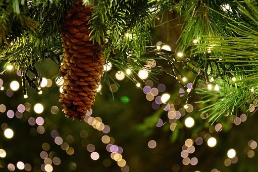 christmas-garland-3891232–340