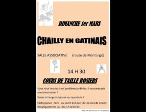cours-taille-de-rosiers