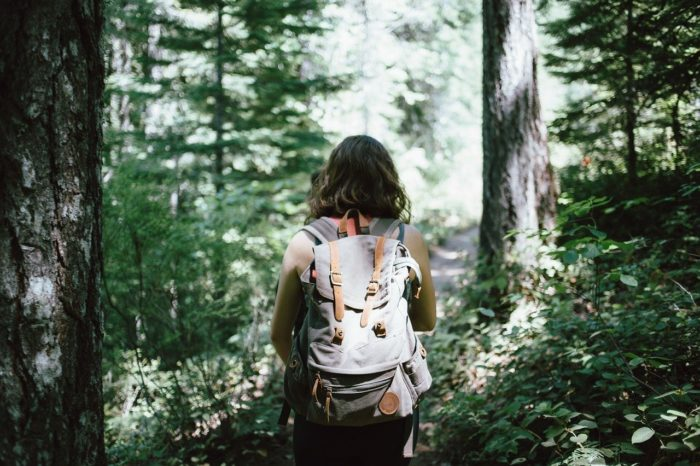 hiker-918704-1280