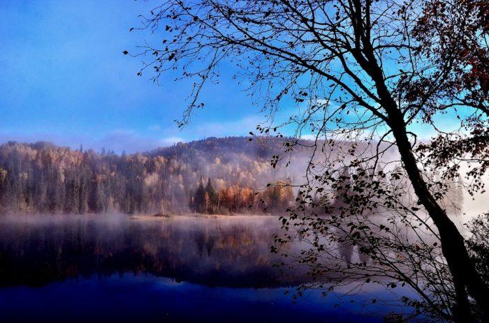 landscape-569676_960_720